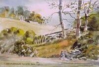 Crawfordsburn Country Park 0125