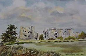 Raglan Castle 0210