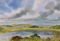 Derryallen Lough, Kinawley 3019