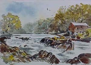 Cenarth Falls 0693