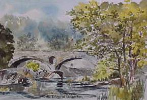 The Bridge at Cenarth Falls 0699