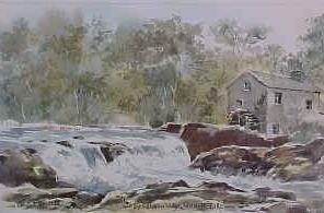 Salmon Leap, Cenarth Falls 0701