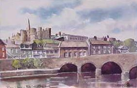 River Slaney, Enniscorthy 0949