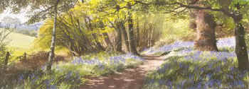 Bluebells, Four Seasons by Ashley Bryant PA131