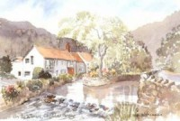 The Willows, Cheddar Gorge 1019