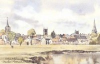 Stamford Meadows, Stamford 1396