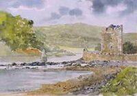 Narrow Water Castle 3029