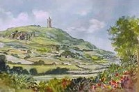 Scrabo Tower 3756