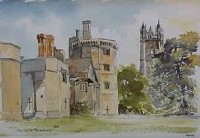The Castle, Thornbury 0494