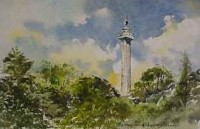 Marquis of Anglesey Column 0715