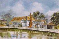 Lindfield Pond 0903