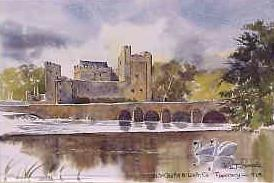 Cahir Castle, Co Tipperary 0929