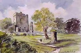Blarney Castle, Co Cork 0936