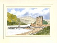 Narrow Water Castle, Co Down, Ireland Original Watercolour Painting by Martin Goode