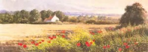 Summer Poppies, Four Seasons by Ashley Bryant PA132